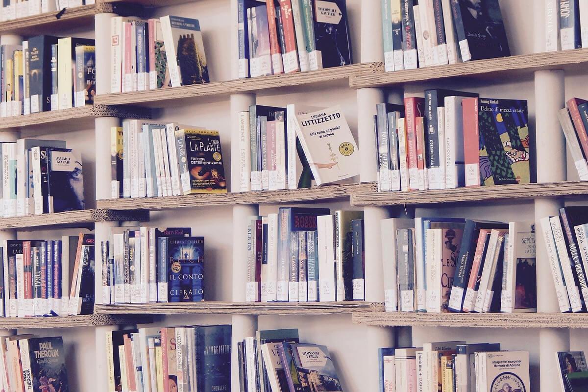 多様性について考える本3冊